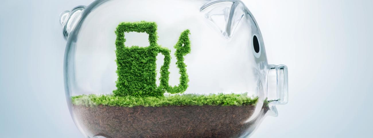 Conoce cuáles son los autos económicos en combustible disponibles en México que te ayudarán a cuidar al medio ambiente, pero también a tu bolsillo.